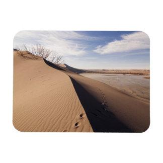 砂丘の形成。 Bruneau砂丘州立公園 マグネット