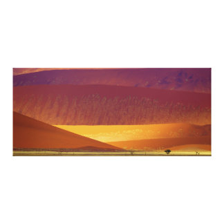砂丘のNamib-Naukluftの国立公園ナミビア キャンバスプリント