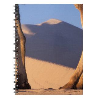 砂丘、トンホワン、カンスーが付いているラクダの足 ノートブック