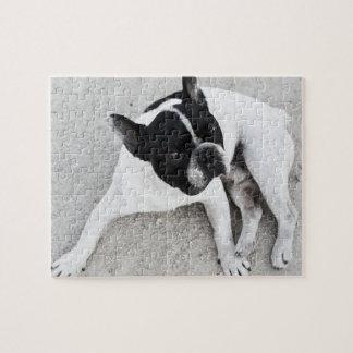 砂利の犬 ジグソーパズル