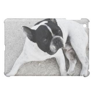 砂利の犬 iPad MINIケース