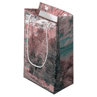 砂利の空の道- Parque Nacional Los Glaciares スモールペーパーバッグ