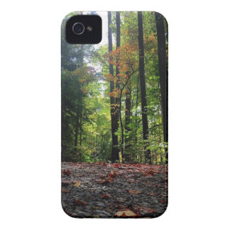 砂利道の紅葉 Case-Mate iPhone 4 ケース