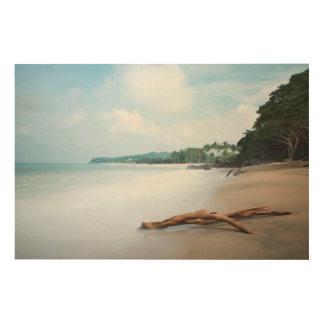 砂浜の海洋波 ウッドウォールアート