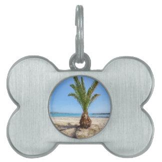砂浜の熱帯ヤシの木 ペットネームタグ