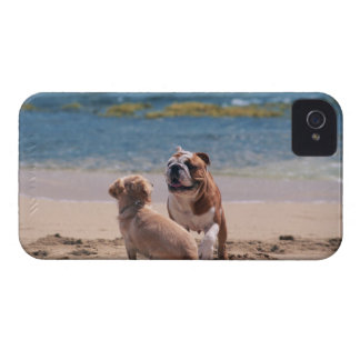 砂浜の犬 Case-Mate iPhone 4 ケース
