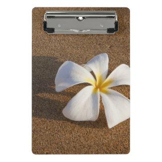 砂浜、マウイ、ハワイ、米国のプルメリア ミニクリップボード