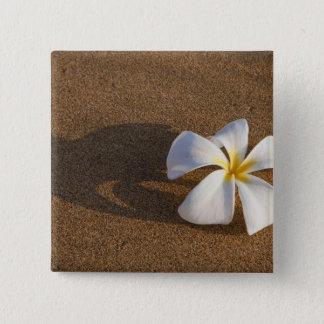 砂浜、マウイ、ハワイ、米国のプルメリア 5.1CM 正方形バッジ