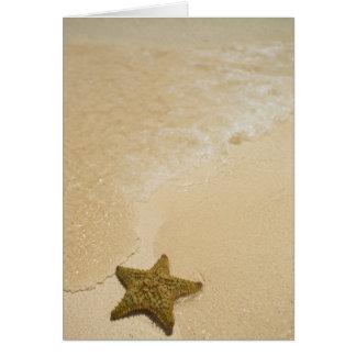 砂浜、Gibbsのキーの土地のヒトデ カード