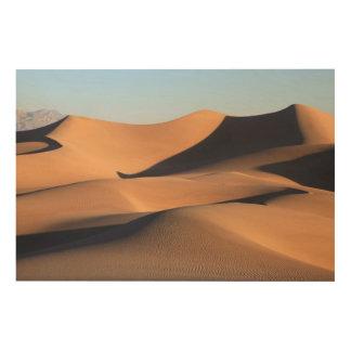 砂漠のすばらしい影 ウッドウォールアート