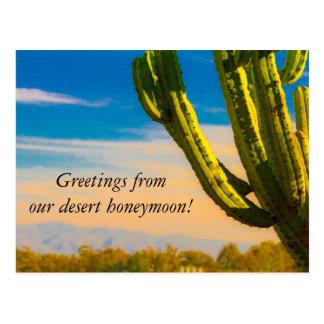 砂漠のサボテンのサグアロの新婚旅行は感謝していしています ポストカード
