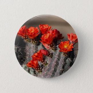 砂漠のサボテンの花 5.7CM 丸型バッジ