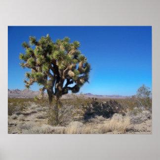 砂漠のジョシュアツリー ポスター