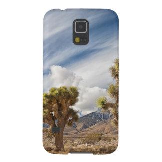 砂漠のジョシュアツリー GALAXY S5 ケース