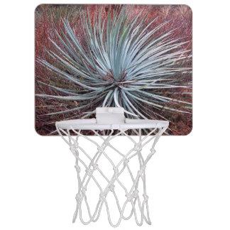 砂漠のユッカ ミニバスケットボールゴール