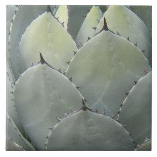 砂漠のリュウゼツランの植物の花柄 タイル