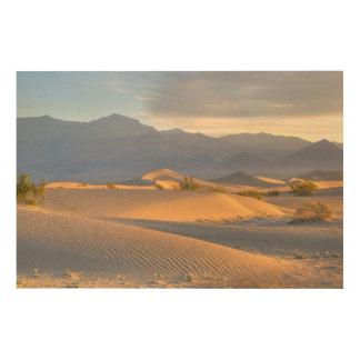 砂漠の夜明け ウッドウォールアート