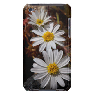 砂漠の星の野生の花 Case-Mate iPod TOUCH ケース