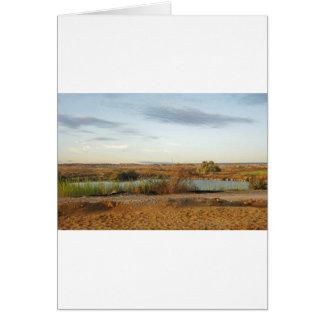 砂漠の景色 カード