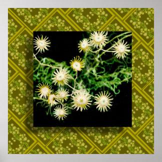 砂漠の植物相5 ポスター