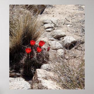 砂漠の花、ジョシュアツリーの国立公園 ポスター