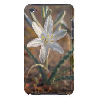 砂漠ユリの野生の花 Case-Mate iPod TOUCH ケース