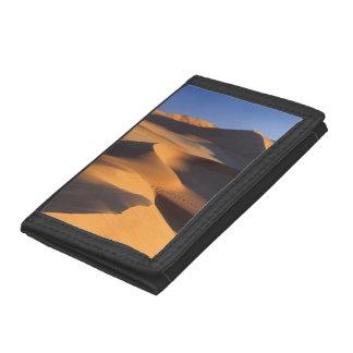 砂漠砂丘、Sossusvlei、Namib-Naukluft
