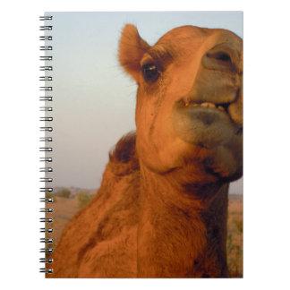 砂漠2のラクダ ノートブック