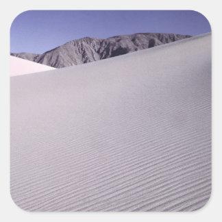 砂漠、デスヴァレー国立公園、カリフォルニア スクエアシール