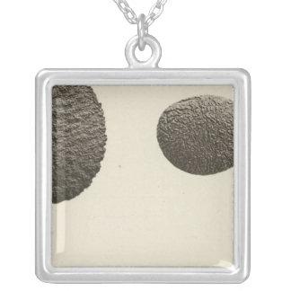 砂、コロラド川で切り分けられる小石 シルバープレートネックレス