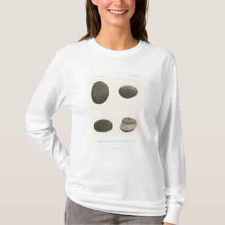 砂、コロラド川で切り分けられる小石 Tシャツ