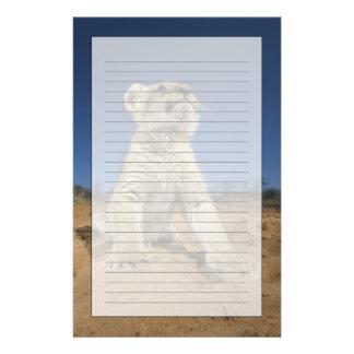 砂、ナミビアに坐るライオンの子(ヒョウ属レオ) 便箋