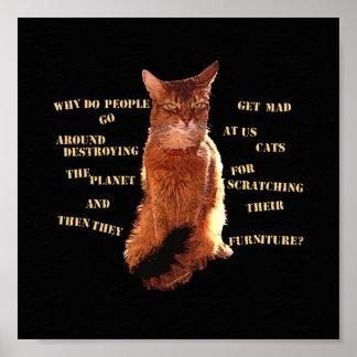 破壊して下さい! ソマリ族猫ポスター ポスター