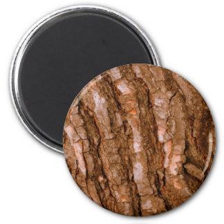 磁石は木を好みます マグネット