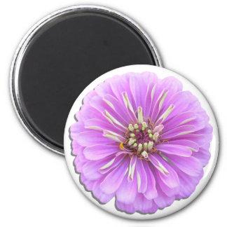 磁石-円形-薄紫の《植物》百日草 マグネット