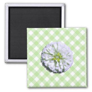 磁石-正方形-白い《植物》百日草 マグネット