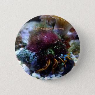 礁のコレクションボタン#2 缶バッジ