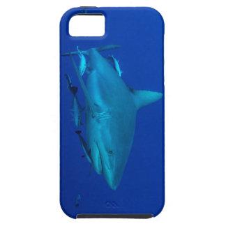 礁の鮫のグレート・バリア・リーフの珊瑚海 iPhone SE/5/5s ケース