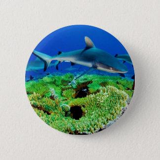礁の鮫の写真 5.7CM 丸型バッジ