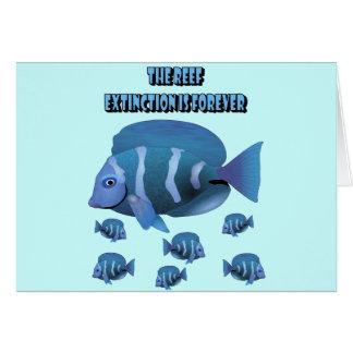 礁 カード