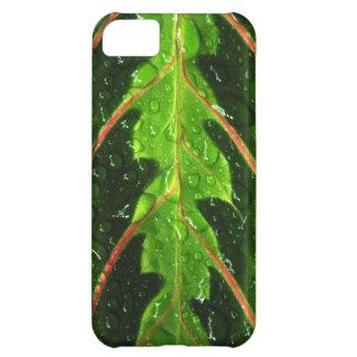 祈りの言葉の植物葉および雨低下のiPhone Case mate iPhone5Cケース