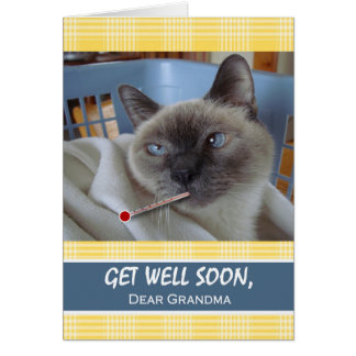 祖母、バスケットの病気猫のための井戸をすぐに得て下さい カード