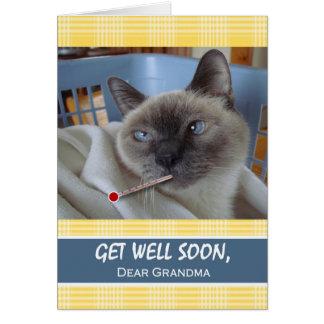 祖母、バスケットの病気猫のための井戸をすぐに得て下さい グリーティングカード