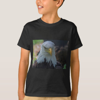 神秘的な宝物 Tシャツ