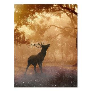 神秘的な森林の雄鹿 ポストカード