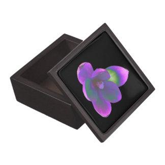 神秘的な美しいのクロッカスの花の優れたギフト用の箱 ギフトボックス