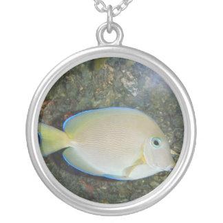 神秘的な魚 シルバープレートネックレス
