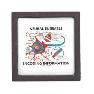 神経のアンサンブルの符号化情報ニューロン ギフトボックス
