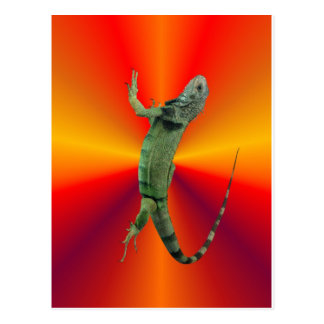 神聖なトカゲ ポストカード