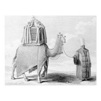 神聖なラクダ ポストカード